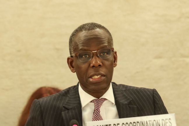 Head of the UN Working Group on Business and Human Rights Michael Addo. UN Photo/Jess Hoffman
