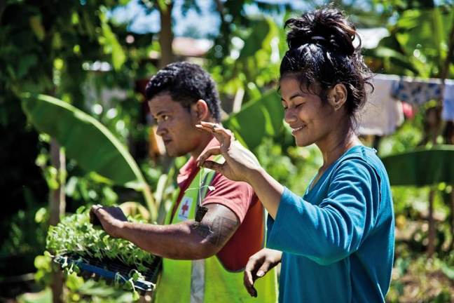 In Samoa, rising sea levels and storms affect the country's fragile agricultural sector, and the Red Cross Society runs a vegetable garden project to teach communities agriculture best practices. Photo: IFRC/Benoit Matsha-Carpentier