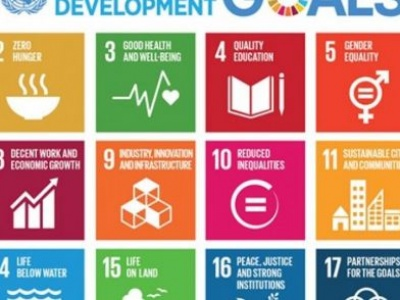 Efficient national tax systems critical for sustainable development and inclusive growth, urge UN, partners