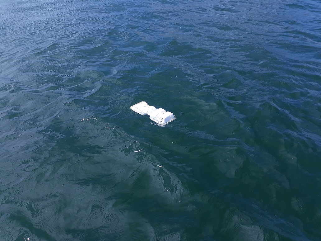 NATURE IN22 styrofoam in the simpson bay lagoon