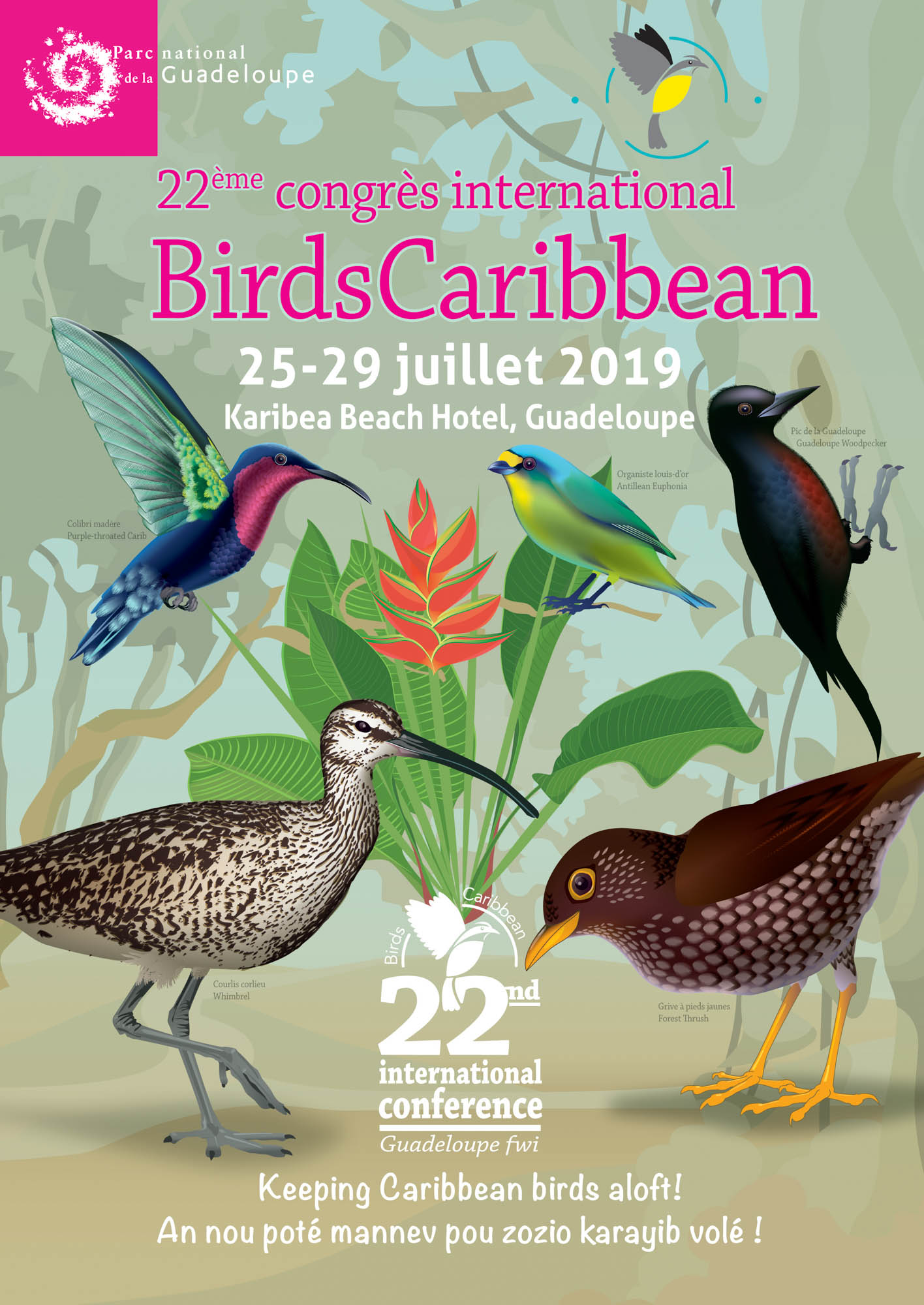 birds Guadeloupe Conference Poster 2