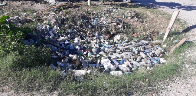A ditch of water in St Maarten is invisible due to massive amount of littered plastic bottles and Styrofoam food containers.