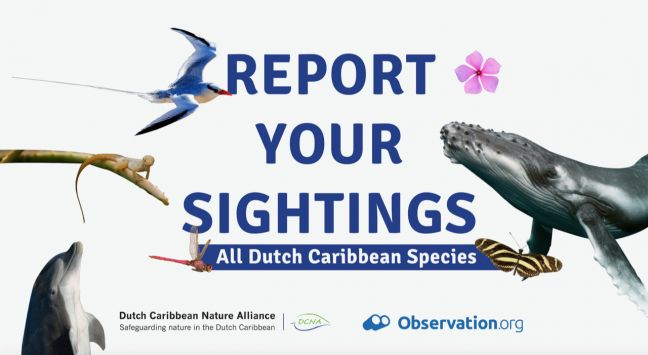 Millions of sightings by citizens contribute to mapping Biodiversity