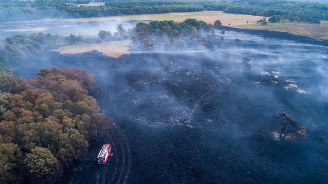 It took two days to put out this fire in Overijssel. Photo: Wilbert Bijzitter / Hollands Hoogte