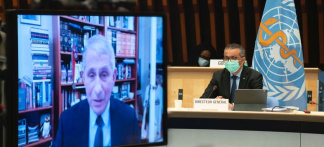 WHO Dr. Anthony Fauci (on screen) and Dr. Tedros Adhanom Ghebreyesus at the WHO Executive Board Meeting.