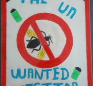 CPS calls on Community to LIKE CARPHA Facebook Page to Catapult Sint Maarten into Winning Regional Mosquito Awareness Competition