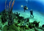 Warning for all scuba divers and dive schools