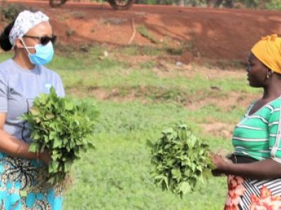 FROM THE FIELD: Adapting to survive and thrive in Ghana