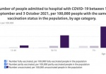 Some 75% of hospital coronavirus patients are not vaccinated: RIVM