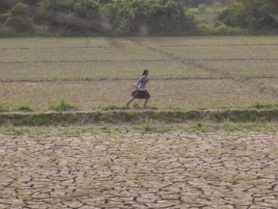 Myanmar and UN agriculture agency agree framework to improve nutrition and food security