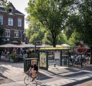 Pollen, not pollution: Utrecht's new bus stops are buzzing